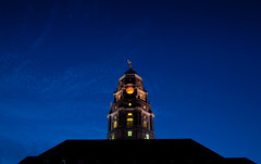 Dresdner Ampel