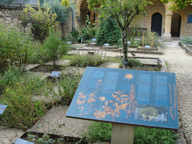 Jardin aux Herbes Aromatiques  Flickr - Photo Sharing!