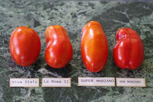 Viva Italy, La Roma II, Super Marzano, San Marzano (tomato varieties)