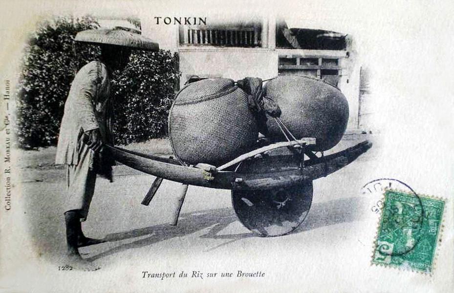 TONKIN - ransport du riz sur une brouette