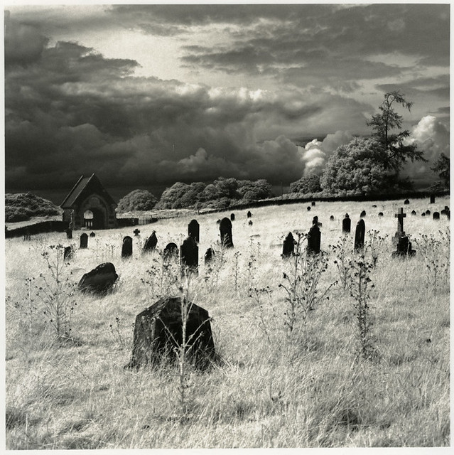 Curragh Graveyard, Kildare, Ireland (Print)