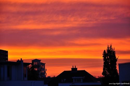 sunrise 日出
