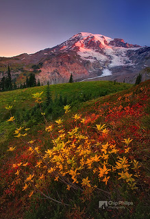 Fall Sunrise, Paradise, Mount Rainier
