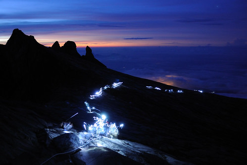 Pre Dawn headtorch trail