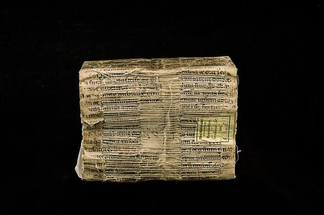 Limp vellum binding: Spine