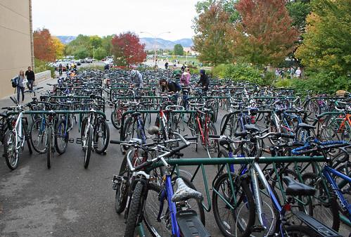 Sea of Bikes