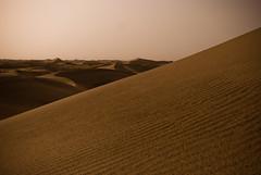 erg, horizon, soil, sand, aeolian landform, natural environment, desert, dune, landscape,