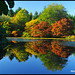 The Two Worlds - Autumn Color in Van Dusen Garden Vancouver N5064e by Harris Hui (in search of light)