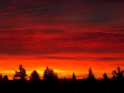 seattle clouds sunrise washington