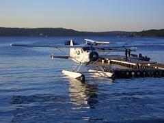 aviation, airplane, vehicle, sea, lake, seaplane,