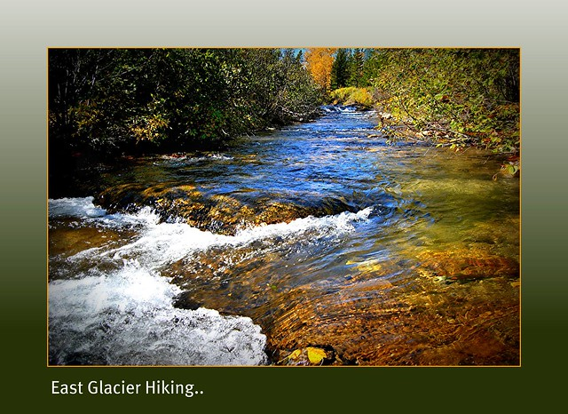 east glacier park singles A helpful guide to choosing the right glacier national park lodging options for your glacier national park halfway between west and east glacier.