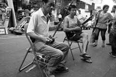 Erhu Players (二胡)