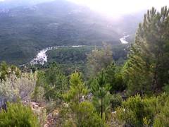 Depuis la piste de Radichella : le cours du ruisseau de Sainte-Lucie