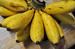 summer squash(0.0), plant(0.0), cooking plantain(1.0), banana(1.0), yellow(1.0), produce(1.0), fruit(1.0), food(1.0),