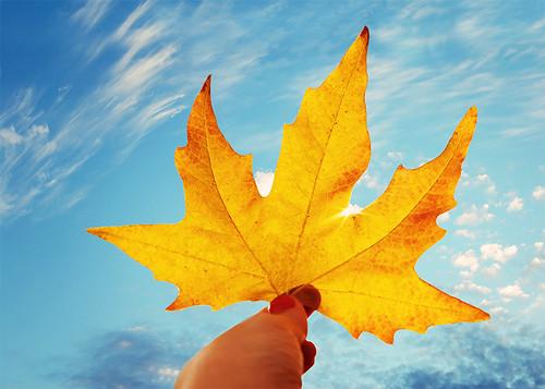 Last Days of Warm Autumn
