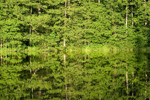 summer suomi finland july juli sommar kesä lovisa loviisa ruotsinpyhtää heinäkuu strömfors nikond3