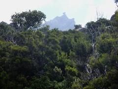 Sentier de montée Sud depuis Giannucciu : l'Uomu di Cagna avant le replat IGN1044