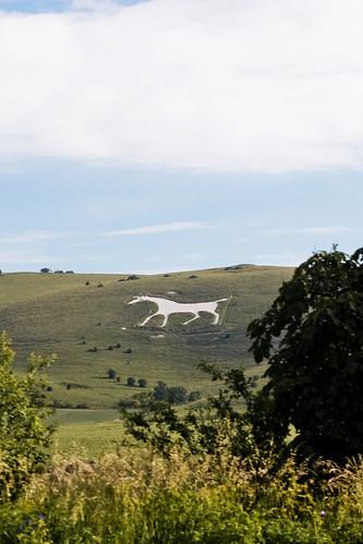 Summer Solstice 2010 - Alton Barnes White Horse