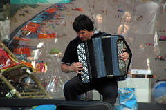 accordion, musician, folk instrument, music, day,