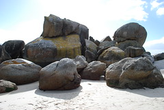Boulders beach, Cape Peninsula