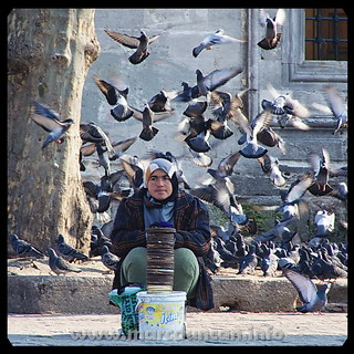 May pigeons surround you: Bird-feed seller, Istanbul