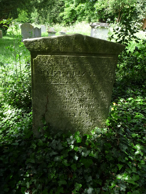 Grave of Mary Elizabeth  173