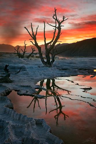 sunrise reflections nationalpark idaho mammoth yellowstone canary wyoming hotsprings harklee