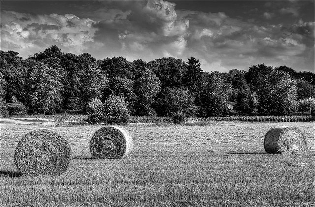 bale of straw (II)