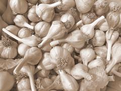 shallot(0.0), pleurotus eryngii(0.0), oyster mushroom(0.0), vegetable(1.0), garlic(1.0), produce(1.0), food(1.0),