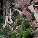 angel's landing trail by glasser