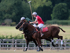 english riding(0.0), western riding(0.0), eventing(0.0), endurance riding(0.0), stick and ball games(1.0), animal sports(1.0), equestrianism(1.0), equestrian sport(1.0), sports(1.0), stick and ball sports(1.0), polo(1.0), horse(1.0), horse trainer(1.0), jockey(1.0),