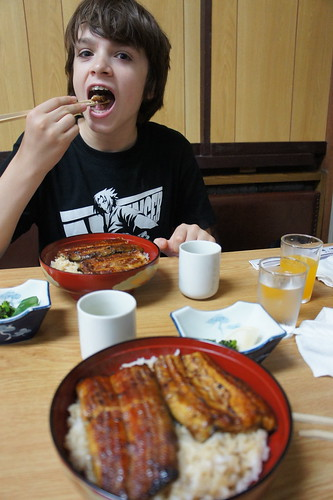 Japan and foods (2)