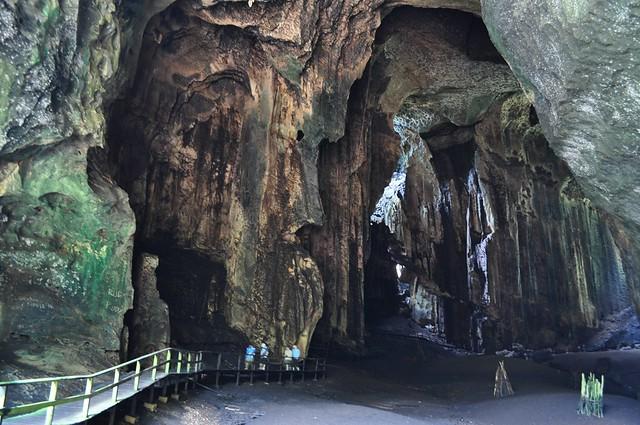 Gomantong cave 2