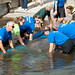 SeaWorld Orlando's animal rescue team returns a manatee to the wild 1