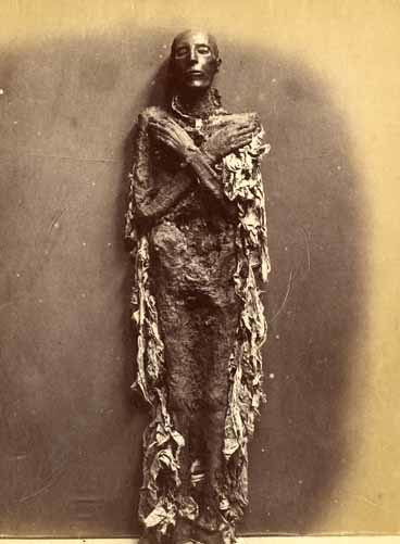 Seti I, by Emil Brugsch 1889