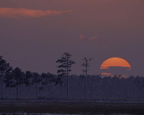 sunset sunrise landscape md wildlife conservation maryland environment blackwater nationalwildliferefuge cooperative northatlantic blackwaternwr usfishandwildlife conservationinclimatechange