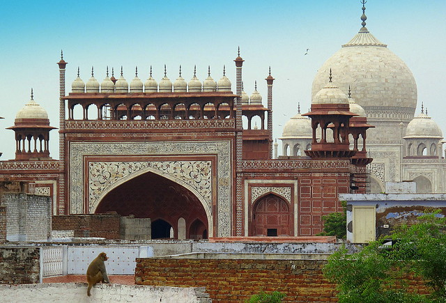 Taj Mahal from Rooftop Restaurant