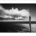 Crosby Beach by Ian Bramham