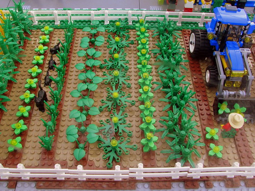 09 TN State Fair #126: Lego Farm