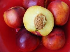 pluot(0.0), plant(0.0), apple(0.0), peach(1.0), produce(1.0), fruit(1.0), food(1.0), nectarine(1.0),