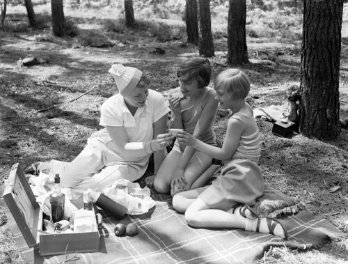 Picknicken in het bos / A picnic in the forest