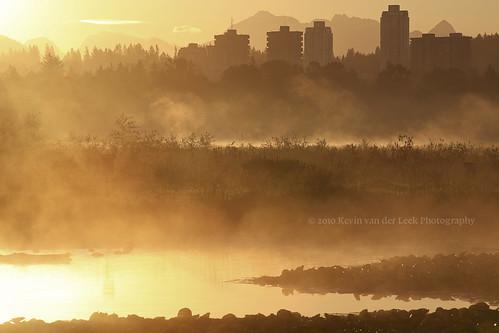 summer mist sunrise dawn britishcolumbia july morningmist burnabylake piperspit kvdl canonef70200mmf28lisiiusm