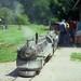 Small photo of Train