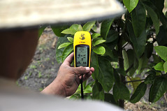 GPS Handheld Units, DAPA GPS Fruit4
