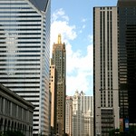 "Chicago (ILL)  Downtown : N Michigan Ave "" The Magnificient Mile """