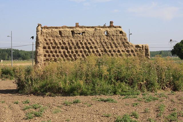 ruinas de palomar entrando en Villaveza del Agua (_MG_5865)