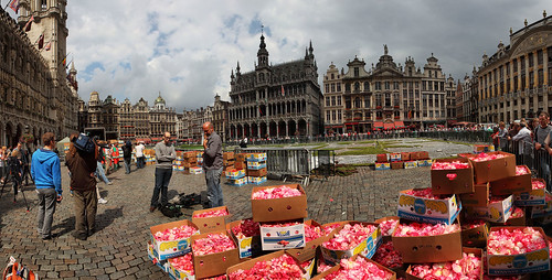 Thursday 01PM, The trucks with the flowers are discharging for the biggest carpet flowers in the world, Brussels Belgium