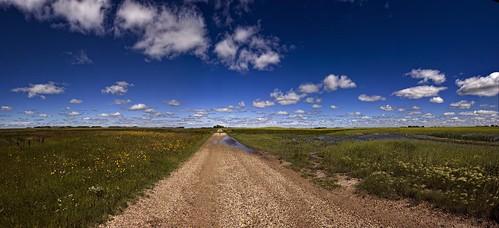 road panorama grasses wildflowers prairie saskatchewan cs4 endlessskies d700 6imagepanorama