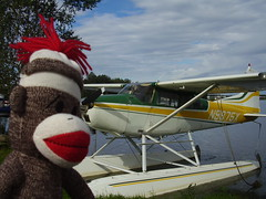 Sock Monkey likes the float plane 8-14-10