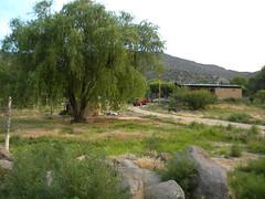 DSCN1421